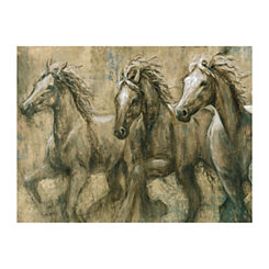Desert Kings Canvas Art Print