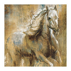 Boundless Beauty Canvas Art Print