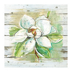 Country Magnolia Canvas Art Print