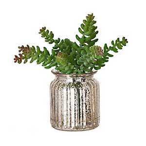Silver Mercury Glass Succulent Arrangement