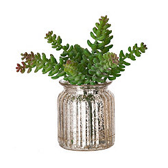 Silver Mercury Glass Succulent Arrangement