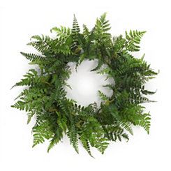 Fern Mix Wreath, 24 in.