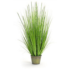 Zebra Grass Arrangement in Green Pot Planter