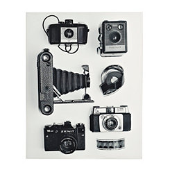 Collection of Cameras Canvas Art Print