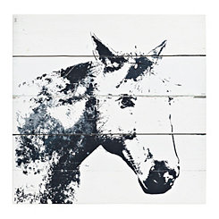 Barn Shadow Canvas Art Print