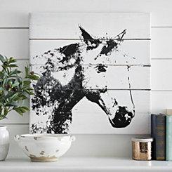 Barn Shadow Canvas Art Print
