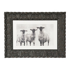 Sheep Trio Framed Art Print