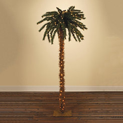 Pre-Lit Palm Tree, 6 ft.