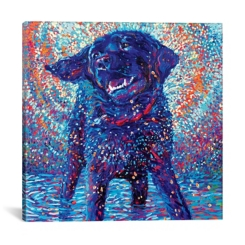 Canines and Color Canvas Art Print
