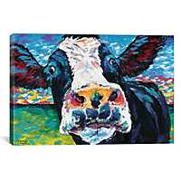 Curious Cow II Canvas Art Print
