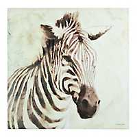 Sleepy Zebra Canvas Art Print