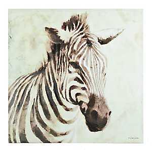 Sleepy Zebra Canvas Art Print