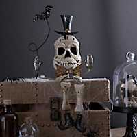 Halloween Skeleton Shelf Sitter