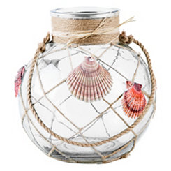 St. Thomas Clear Seashell Lantern, 10 in.