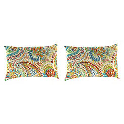 Gilford Festival Outdoor Accent Pillows, Set of 2