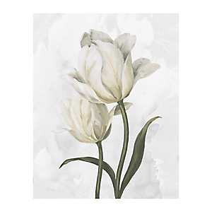White Tulip Waltz II Canvas Art Print