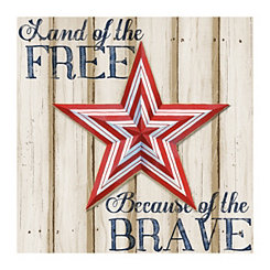 Land Of The Free Canvas Art Print