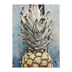 Pineapple Blues Canvas Art Print