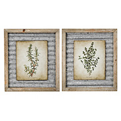Galvanized Botanicals Framed Art Prints, Set of 2