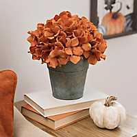 Orange Hydrangea Arrangement in Galvanized Bucket