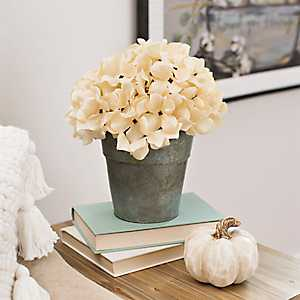 Cream Hydrangea Arrangement in Galvanized Bucket