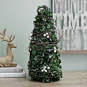 Preserved Boxwood and Berries Cone Tree, 16 in.