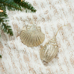 Cream Seashell Ornaments, Set of 2