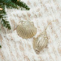 Cream Seashell Ornaments, Set of 2