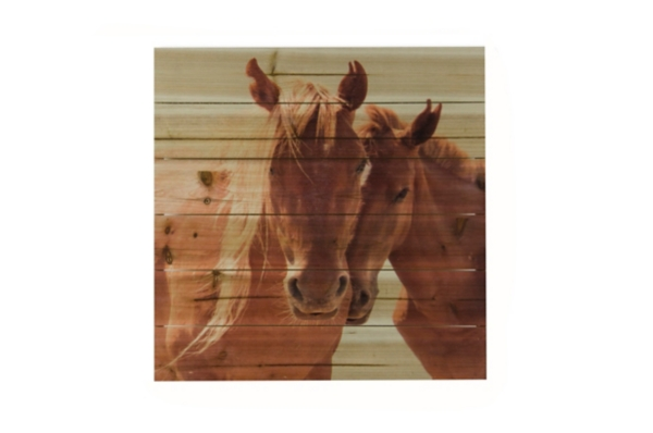 Horses Snuggling Wood Art Print