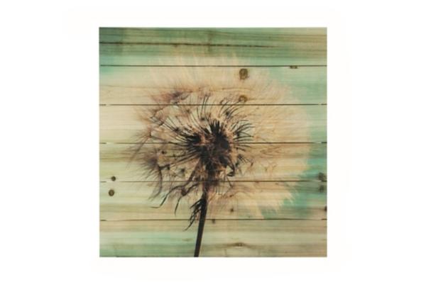 Dandelion Wishes Wood Art Print
