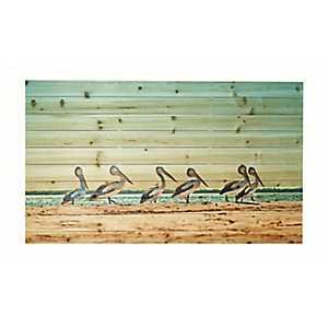 Walking Pelicans Wood Art Print