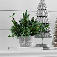 Pine Arrangement in Concrete Reindeer Pot