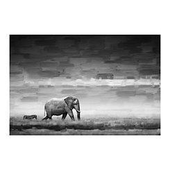 Elephant and Zebra Canvas Art Print