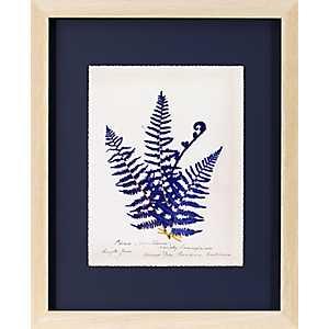 Fern On Indigo Framed Art Print