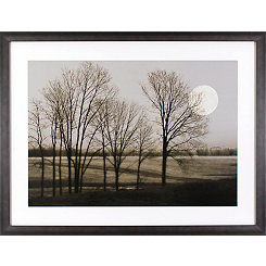 November Moon Framed Art Print