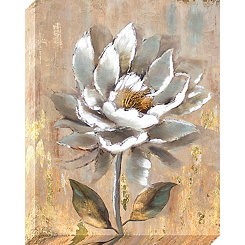 Aged White Flower Canvas Art Print