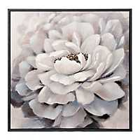 White Peony Framed Canvas Art Print