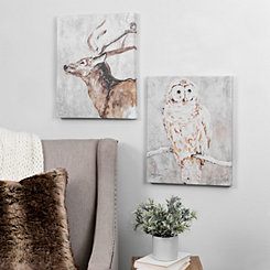 Wise Owl and Deer Canvas Art Prints
