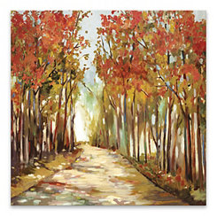 A Sunny Path Canvas Art Print