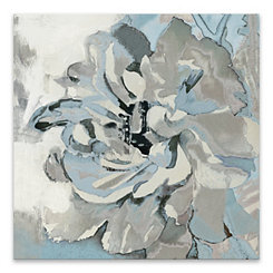 Cacophony Canvas Art Print