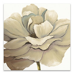 Cream Silken Bloom Canvas Art Print