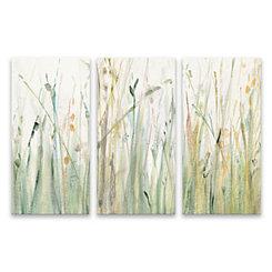 Spring Grasses Canvas Art Prints, Set of 3