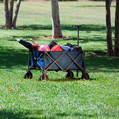 Blue Collapsible Adventure Wagon