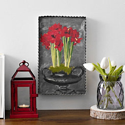 Red Amaryllis Framed Art Print