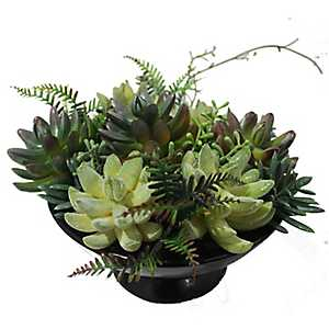 Black Ceramic Vase Succulent Arrangement