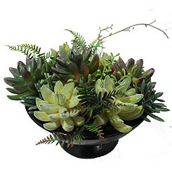 Black Ceramic Vase Succulent Arrangement