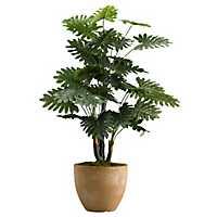 Selloum Philo Plant In Round Resin Planter, 36 in.