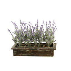 Lavender Arrangement in Wood Box Planter