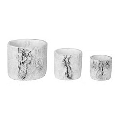 Faux Birch Log Round Concrete Planters, Set of 3