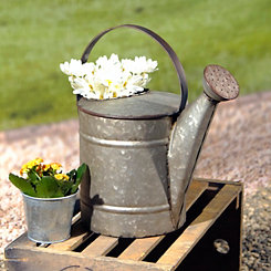 Galvanized Metal Decorative Watering Can